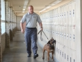 Impact-Canine-Solutions-311